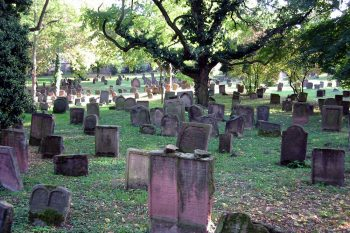Little Vine Cemetery in Empire Alabama