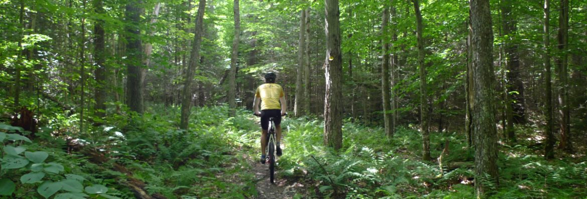 Biking Trails in Alabama