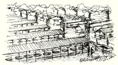 "Bon Secour Salt Factory Drawing by Hazel and Richard Brough from the book ""Food, Fun, and Fable."""