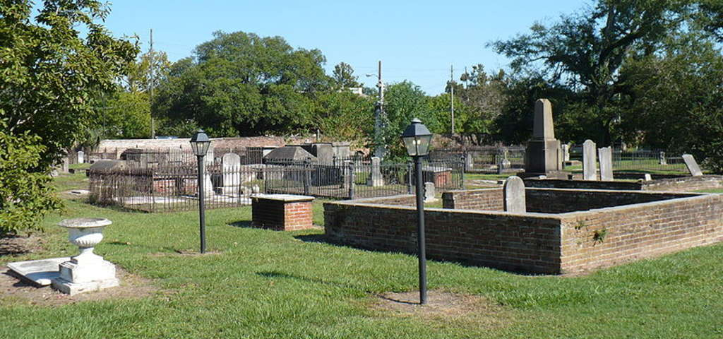 Boyington Oak | Church Street Graveyard | Mobile Alabama