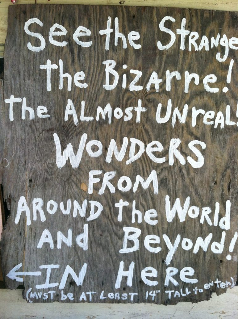 See The Strange & Bizarre at Museum of Wonder in Seale Alabama