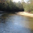 Mulberry Creek Alabama Gold