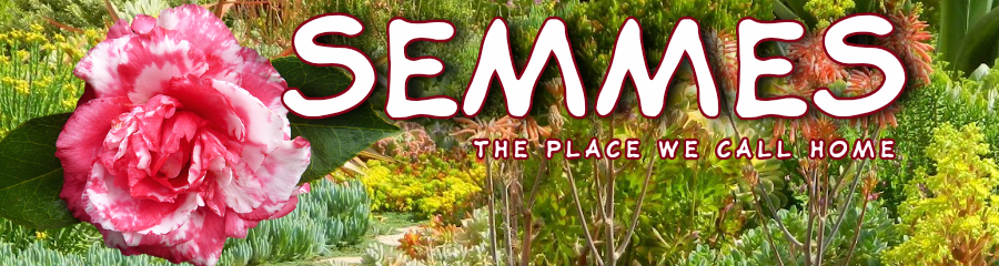 Semmes Alabama: the place we call home