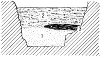 Fig. 23.—Cross section of Fort Deposit Cave at 18 feet.