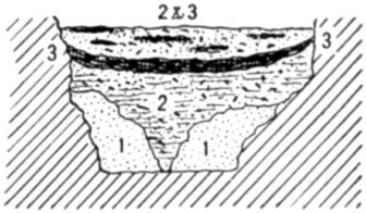 Fig. 24.—Cross section of Fort Deposit Cave at 20 feet.