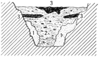 Fig. 25.—Cross section of Fort Deposit Cave at 22 feet.