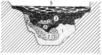 Fig. 26.—Cross section of Fort Deposit Cave at 26 feet.