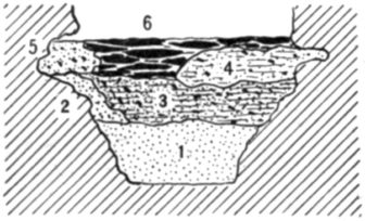 Fig. 27.—Cross section of Fort Deposit Cave at 28 feet.
