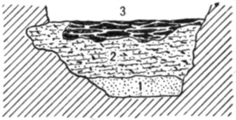 Fig. 28.—Cross section of Fort Deposit Cave at 30 feet.