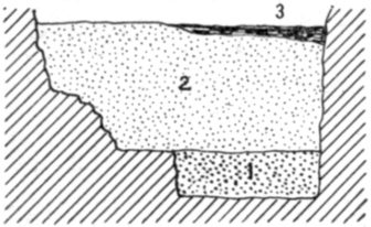 Fig. 33.—Cross section of Fort Deposit Cave at 90 feet.